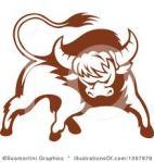 bull66